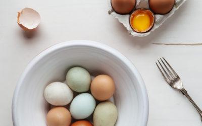 Was du über Eiweiß, Fett & Kohlenhydrate wissen solltest!